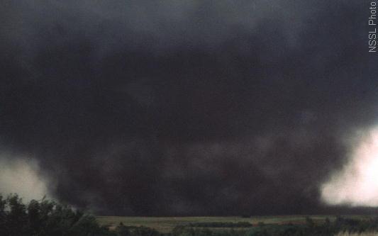 Category 5 Tornado : Wedge tornado online faq